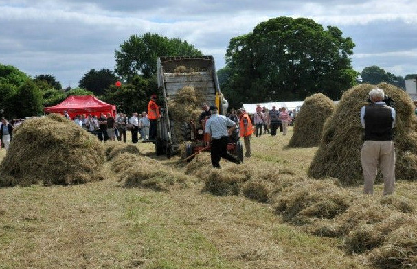 Things to do in County Meath, Ireland - Trim Haymaking Festival - YourDaysOut