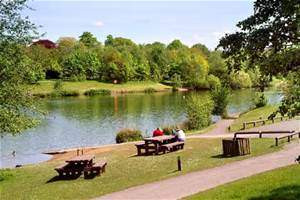 Things to do in England Manchester, United Kingdom - Chorlton Water Park - YourDaysOut