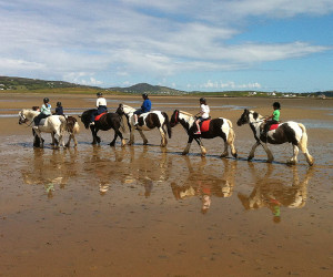 Things to do in County Donegal, Ireland - Carrigart Riding Stables - YourDaysOut