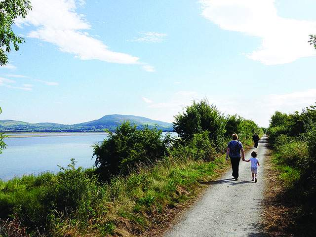 Things to do in County Donegal, Ireland - Inch Wildfowl Reserve - YourDaysOut