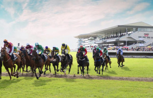 Things to do in County Galway, Ireland - Galway Races - YourDaysOut