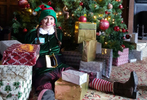 Things to do in County Wexford, Ireland - Santa's Arrival to  Wells House & Gardens - YourDaysOut