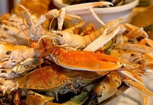 Things to do in County Cork, Ireland - Baltimore Seafood Festival - YourDaysOut