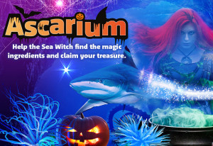 Things to do in County Wicklow, Ireland - Halloween Spooktacular at SEA LIFE Bray - YourDaysOut