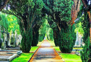 Things to do in County Dublin, Ireland - Summer Children's Tours at Glasnevin Cemetery Museum - YourDaysOut