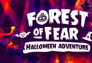 Things to do in County Louth, Ireland - Forest of Fear Adventure |  Carlingford - YourDaysOut