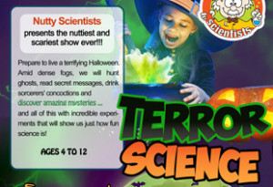 Things to do in County Wexford, Ireland - Nutty Scientist Presents Terror Science - YourDaysOut